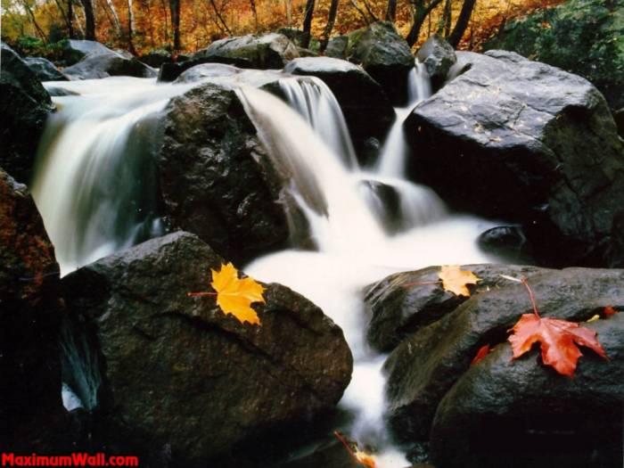 Phong cảnh thiên nhiên