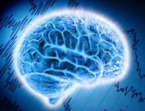Bí ẩn cơ thể người: Không có não nhưng vẫn sống (Phần 1)