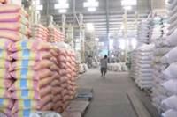9 tháng, xuất khẩu gần 5,4 triệu tấn gạo