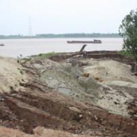 Bờ đê sông Hồng bị sạt lở nghiêm trọng