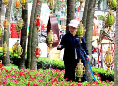 Nữ công nhân tưới nước chăm sóc để giữ độ tươi cho hoa trong những ngày đường hoa hoàn thành.
