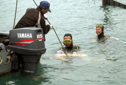 Sau vụ chìm tàu du khách đến Hạ Long giảm hẳn