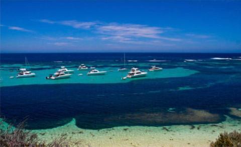 Chiều xuống trên những cánh buồm trẻ trong vịnh biển xanh.