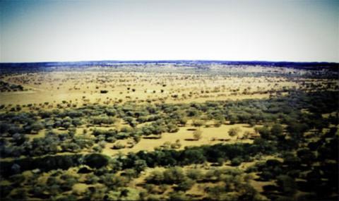 """Máy bay hạ cánh, ngút ngàn là Great Victoria desert hoang vu hẻo lánh. Tôi sống ở đây 4 ngày trong chương trình tình nguyện kết nối hữu nghị giữa người da trắng và người da đỏ. Tôi là thành viên"""" da vàng"""" duy nhất trong chuyến đi . Chương trình do tổ chức tình nguyện viên Australia kết hợp với trường Đại Học Curtin."""