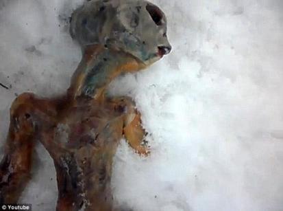 Tìm thấy xác người ngoài hành tinh ở Nga?