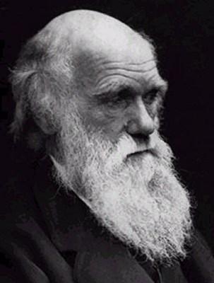 Học thuyết Darwin - Một chủ đề cấm