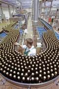 Một nhà máy bia ở Hamburg (Đức) - Ảnh: Bloomberg