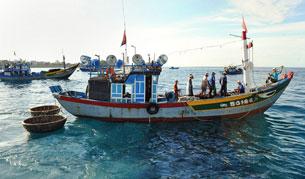 Tàu cá Việt Nam kéo theo một số thuyền thúng dùng để câu mực . AFP
