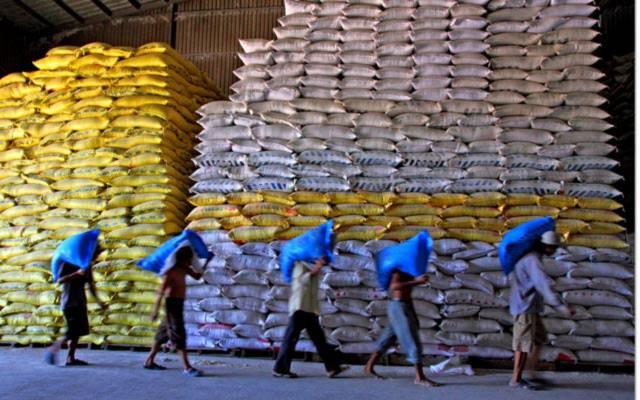 Chạy theo số lượng, xuất khẩu gạo Việt Nam vẫn bị lệ thuộc vào Trung Quốc. Ảnh danviet.vn
