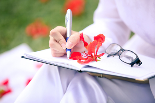 lưu bút hoa phượng