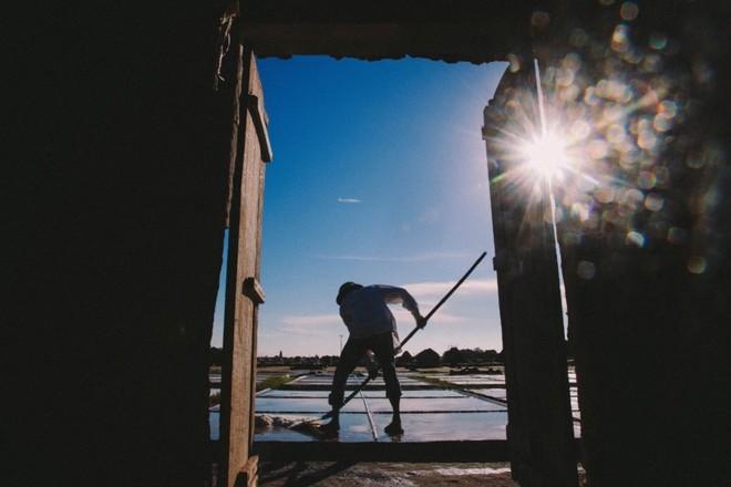 Cuộc sống diêm dân trên cánh đồng muối Nam Định