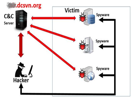 Sơ đồ tấn công của mã độc đã được cài vào hệ thống của Vietnam Airlines (Ảnh Bkav cung cấp cho Ictnews.vn)