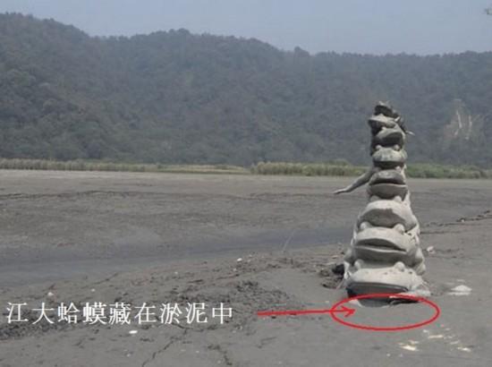 Cóc 9 tầng tại hồ Nhật Nguyệt lộ nguyên hình khi nước hồ cạn kiệt, nhưng con cóc cuối vẫn được che dưới lớp bùn.