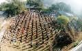 Các học viên Phaa1p Lau6n Công đang tập công ở 1 công viên tại Trung Quốc trước khi bị bức hại năm 1999