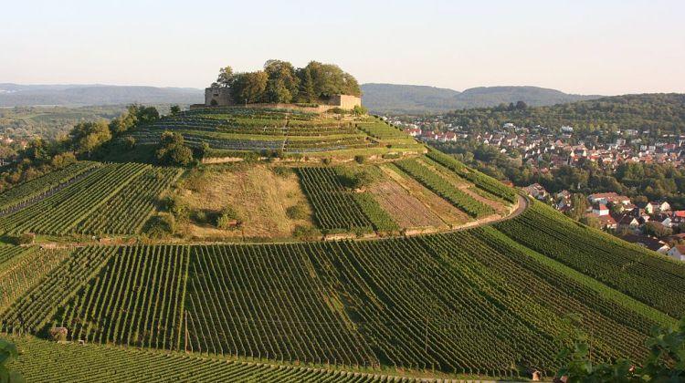 Phần còn lại của tòa lâu đài tại Weinsberg. (Ảnh từ wikipedia.org)